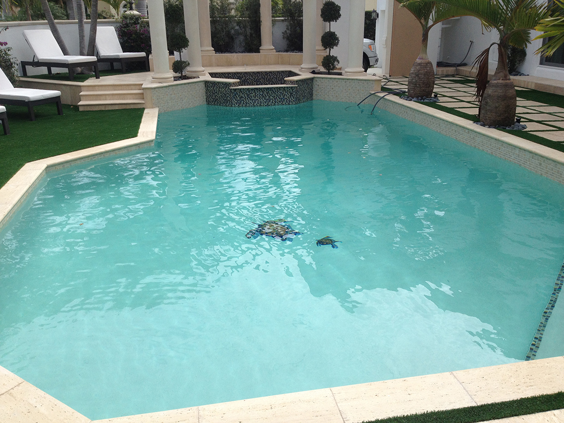 Swimming Pool Refinished